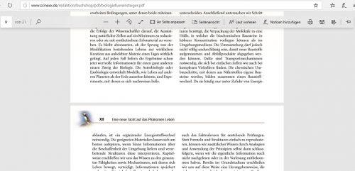 PDF-Darstellung in Edge
