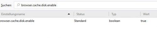 Cache in Firefox abschalten