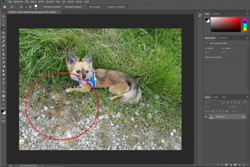 Adobe Photoshop CC Test Screenshot