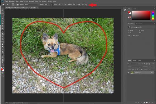 Symmetriewerkzeug bei Photoshop CC