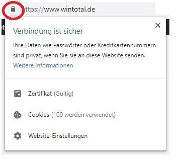 Browser mit Schloss-Symbol