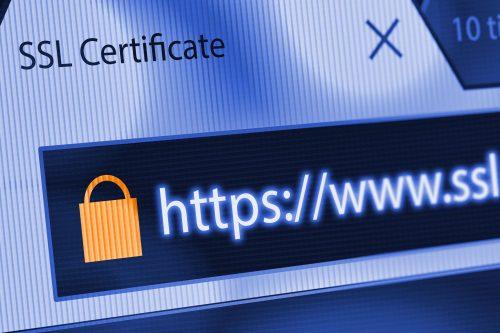 Netzwerkprotokolle https Seite im Windows 10 Browser öffnen