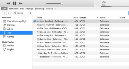 iTunes Media Player in Aktion
