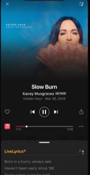 Screenshot der SoundHound Musikerkennungs-App
