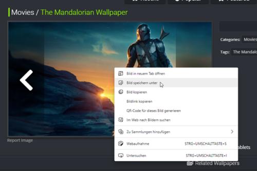 Bilder können über den Browser abgespeichert werden