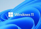 Logo und Hintergrund von Windows 11