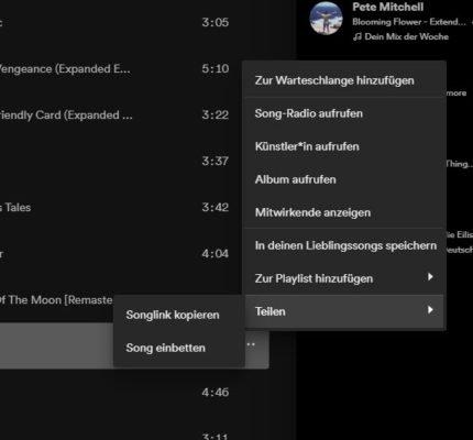 Song URL für Lieder aus Spotify kopieren