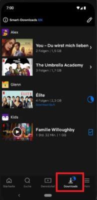 Netflix-App Download-Symbol