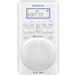 dab+-radio-sangean