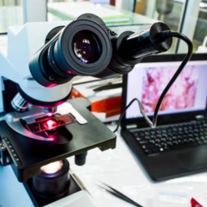 usb-mikroskop-vergeichstestsieger